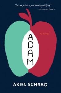 adam-811114-264-432