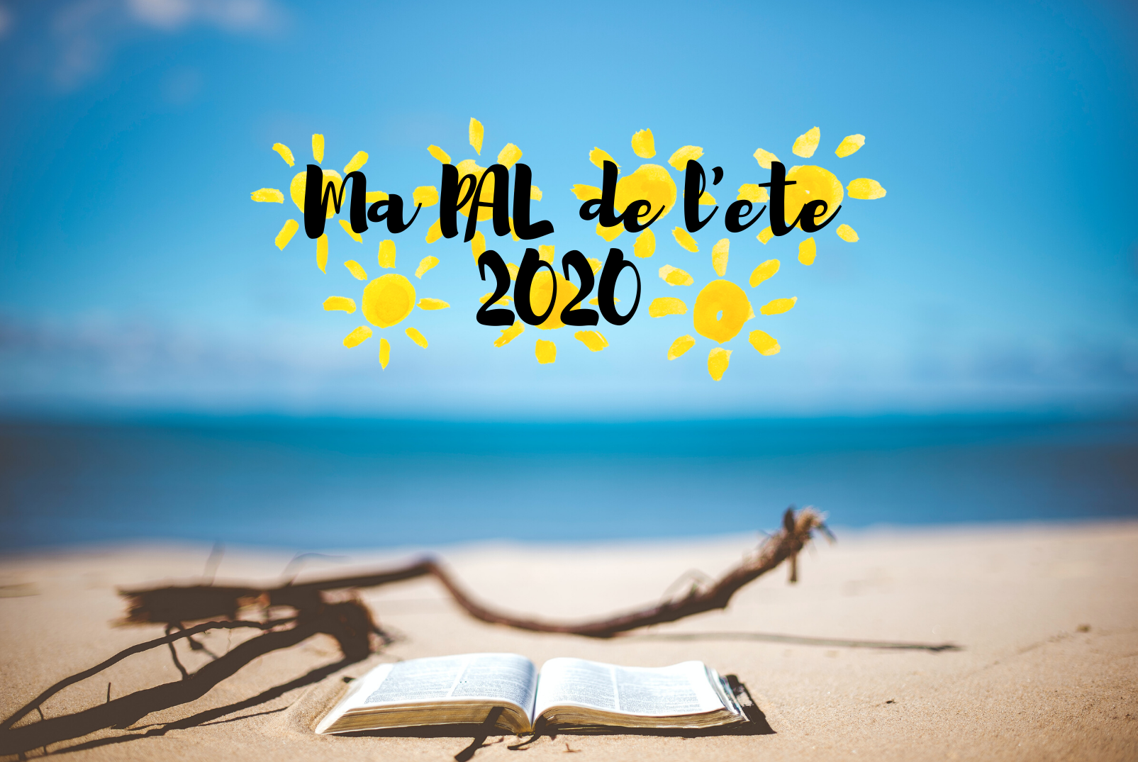 Ma PAL de l'ete 2020